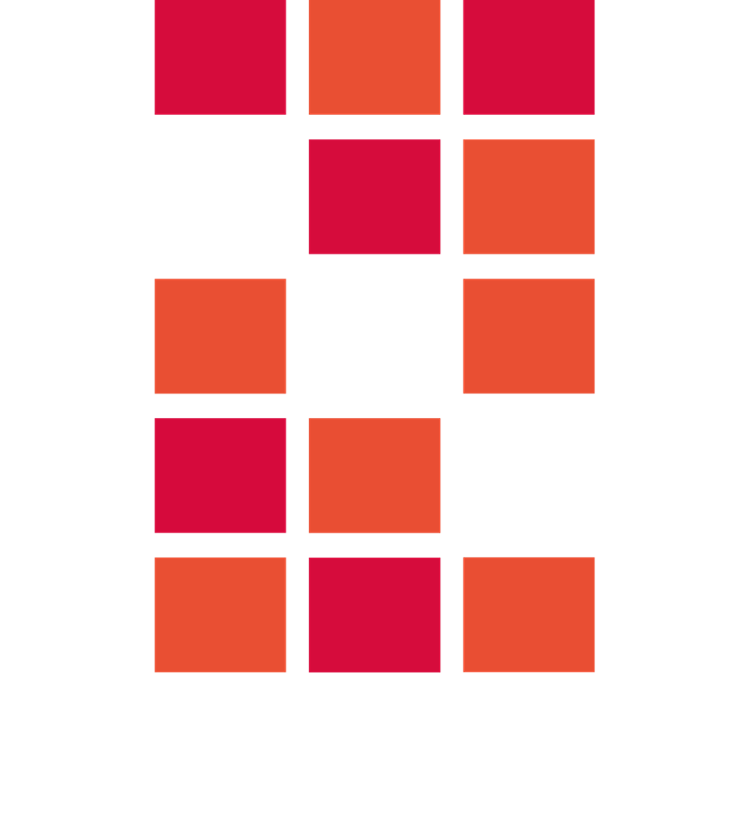 nedergem_logon_negatief-1